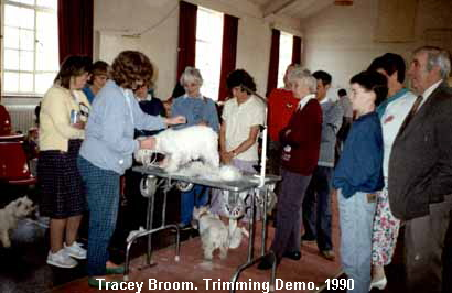 a_Tracey_Broom__Trimming_Demo